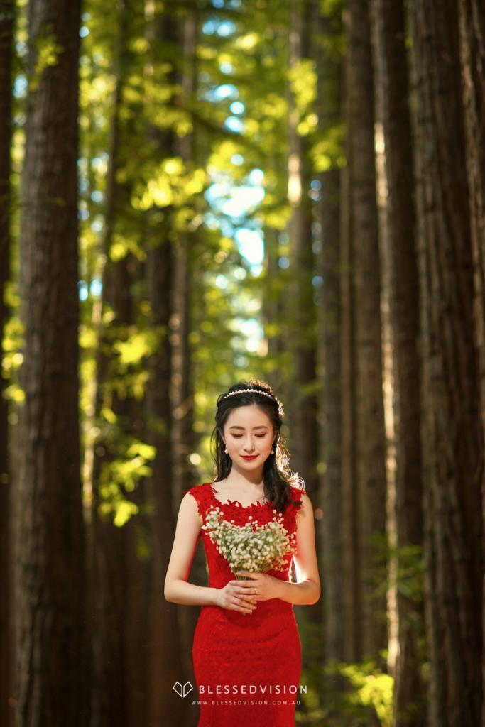 redwood forest vintage Prewedding Wedding Photography Melbourne Sydndey Australia (1 of 19)